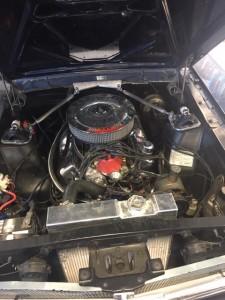 Mustang Motor before